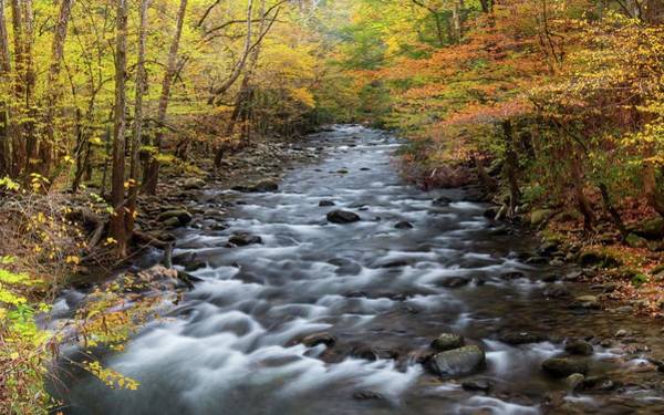 Photograph - Smoky Mountain Stream In Autumn by Chris Berrier