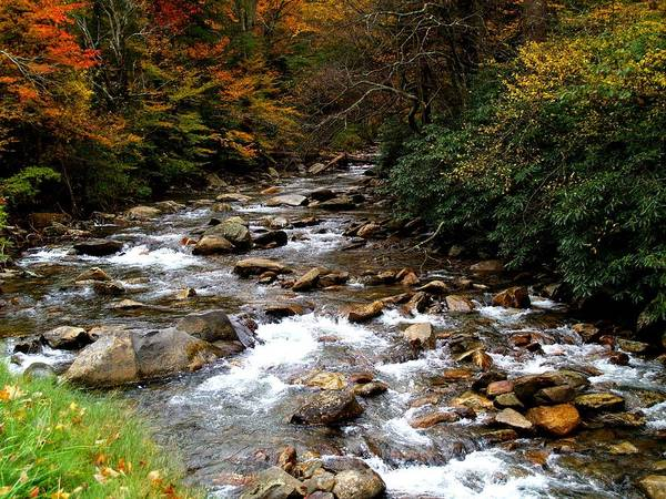 Photograph - Smoky Mountain Stream by Joy of Life Art Gallery