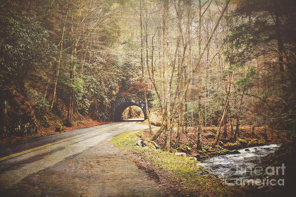 Wall Art - Photograph - Smoky Mountain Tunnel And Stream by Joan McCool
