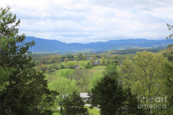 Photograph - Smoky Mountains Valley In Springtime by Carol Groenen