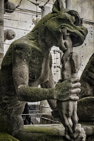 Photograph - Snack Time At Notre Dame by Joan Carroll