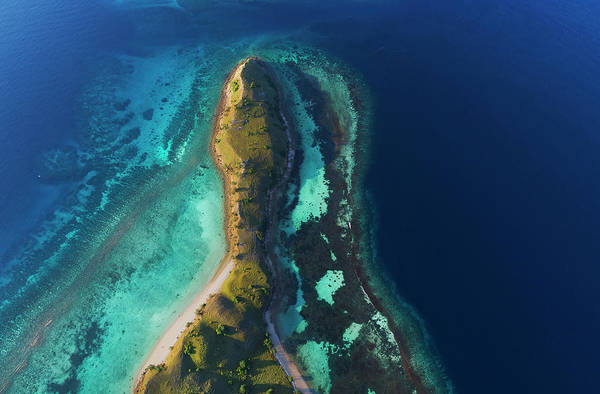 Photograph - Snake Beach Of Flores Island by Pradeep Raja PRINTS