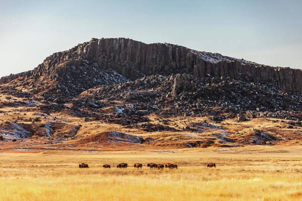 Photograph - Snake Butte by Todd Klassy