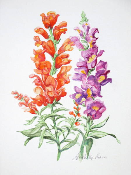 Snapdragons Painting - Snapdragons by April McCarthy-Braca