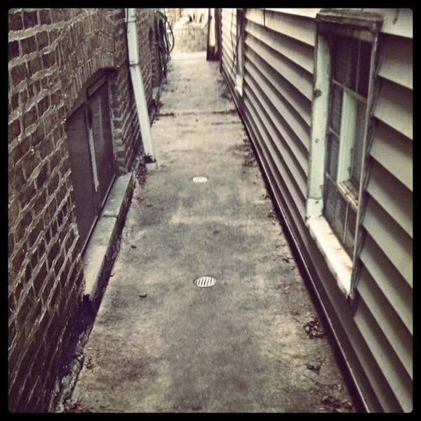 Photograph - Sneakin Thru The #alley #chicago by Tammy Winand