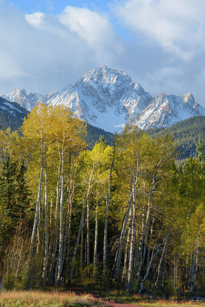 Wall Art - Photograph - Sneffels Autumn Vertical by Aaron Spong