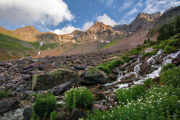 Photograph - Sneffels Wilderness Waterfall by Aaron Spong