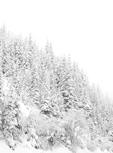 Icing Digital Art - Snoqualmie Pass by Ann Johndro-Collins