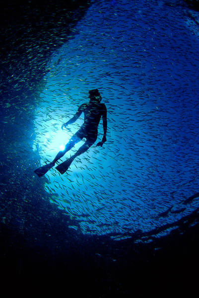 Photograph - Snorkeler by Gary Felton