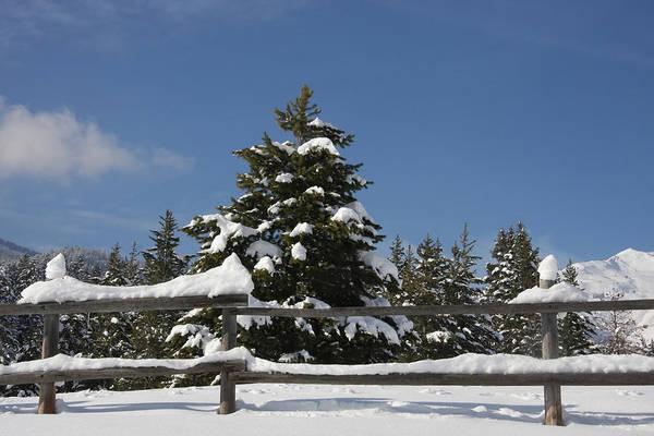 Photograph - Snow And Sky 3 by Mark Smith