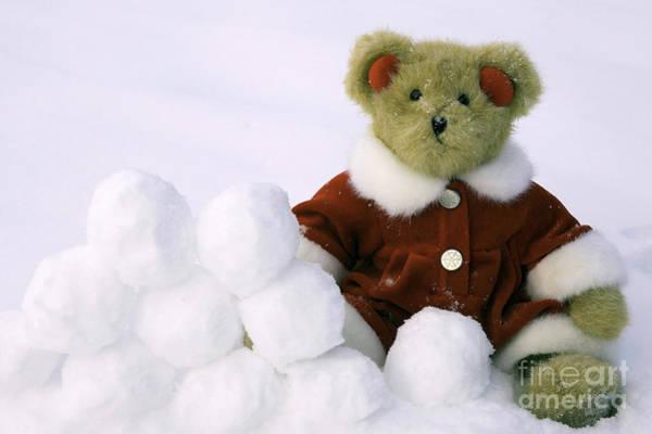 Ear Muffs Photograph - Snow Ball Fight by Karen Foley