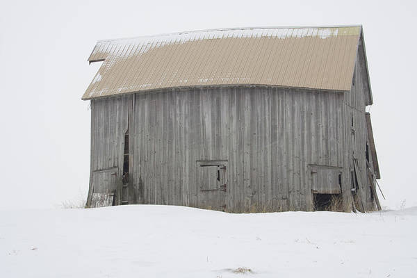 Photograph - Snow Barn I by Dylan Punke