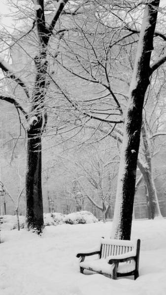 Park Bench Photograph - Snow Bench by Andrew Dinh