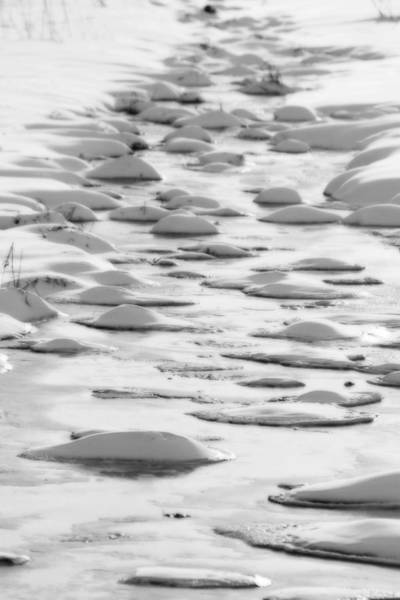 Photograph - Snow Bubbles  by Cathy Beharriell
