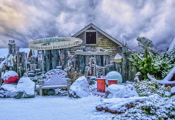 Photograph - Snow Bungalow by Bill Posner