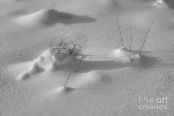 Black Ice Photograph - Snow Bw by Veikko Suikkanen