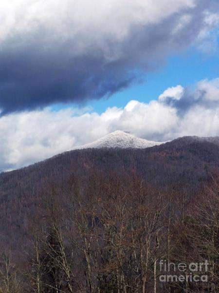 Photograph - Snow Capped by Jennifer Robin