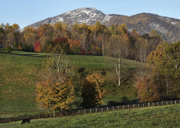 Wall Art - Photograph - Snow Capped Old Rag Mountain - Virginia by Brendan Reals