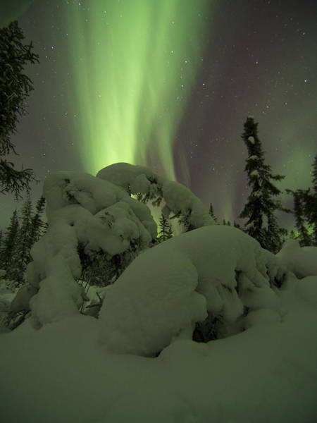 Photograph - Snow Clouds Aurora by Ian Johnson