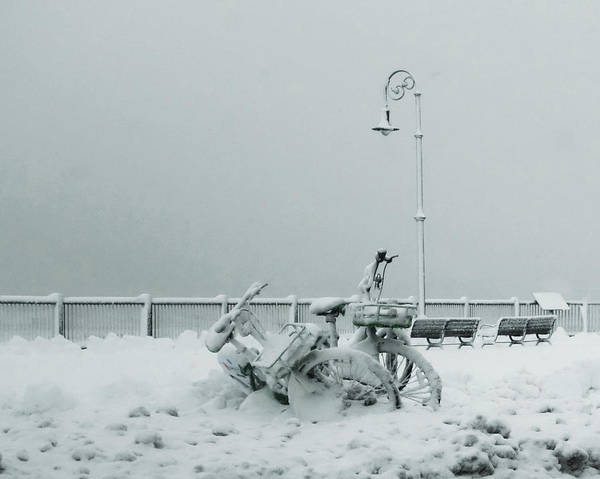 Photograph - Snow Covered Bikes On The Lynn Waterfront by Toby McGuire