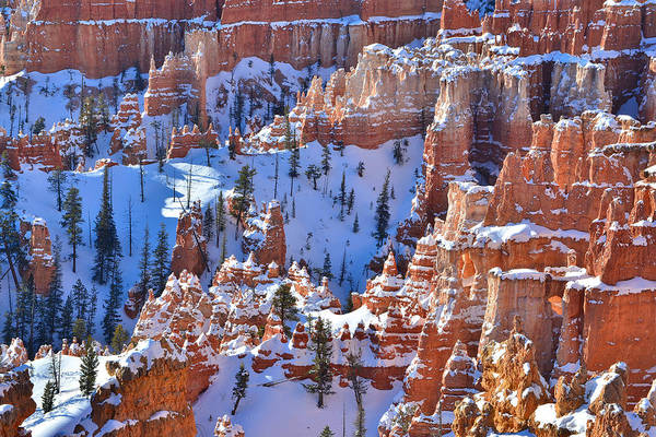Photograph - Snow Covered Fairyland by Ray Mathis
