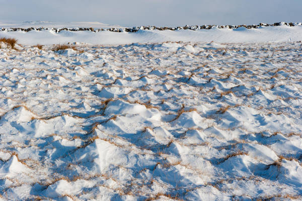 Photograph - Snow Covered Grass by Helen Northcott