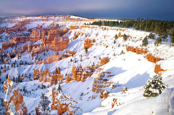 Photograph - Snow Covered Hoodoos Bryce Canyon National Park by Dave Welling