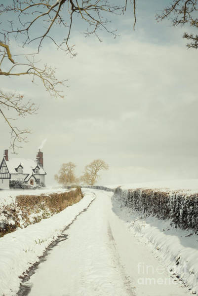 Wall Art - Photograph - Snow Covered Landscape by Amanda Elwell