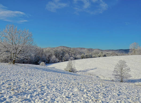 Photograph - Snow Covered Pasture by Susan Leggett