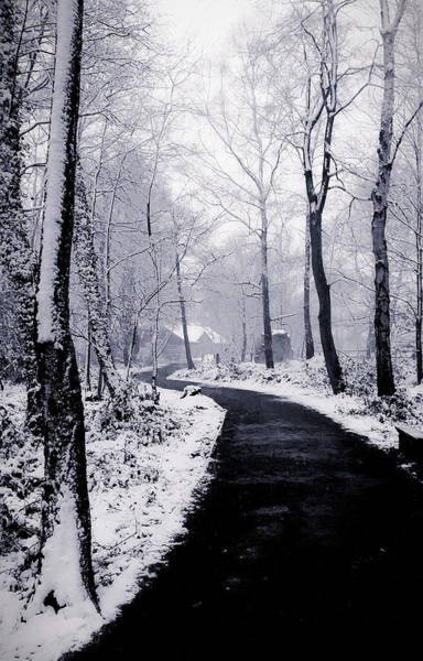 Falling Snow Wall Art - Photograph - Snow Covered Path by Martin Newman