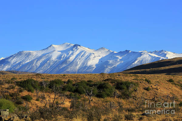 Wall Art - Photograph - Snow Covered Sierra Masle In Torres Del Paine National Park Chile by Louise Heusinkveld