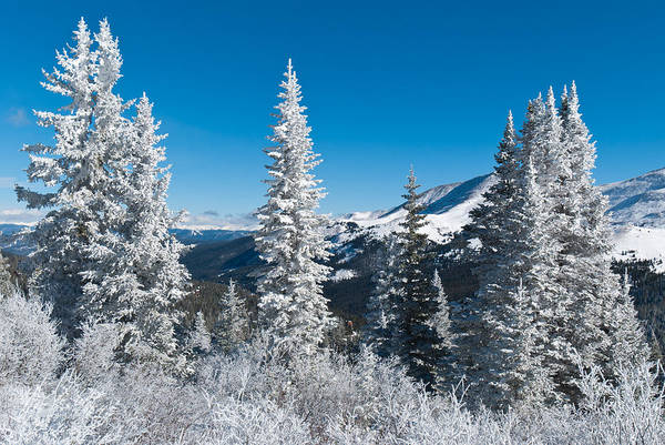 Photograph - Snow-covered Winter World by Cascade Colors