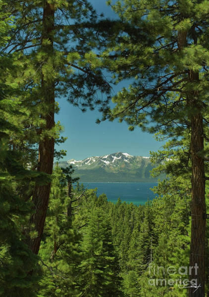 Wall Art - Photograph - Snow Cross On Mt Tallac Lake Tahoe by Vance Fox