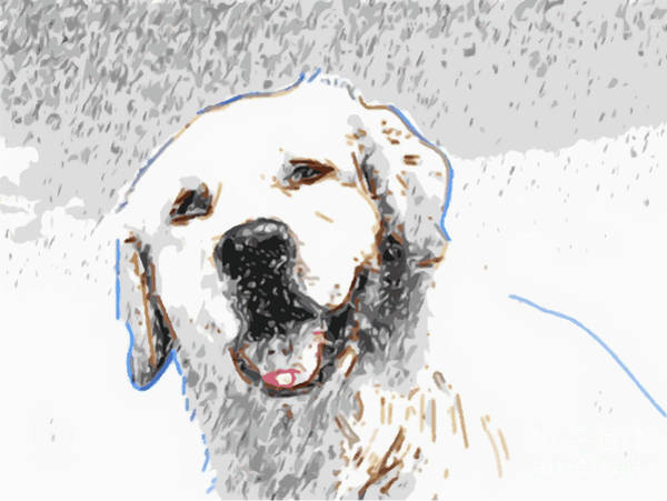 Great Pyrenees Photograph - Snow Dog by Laura Brightwood