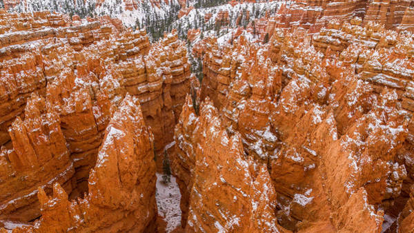 Photograph - Snow Dusted Hoodoos Of Bryce Canyon by Pierre Leclerc Photography