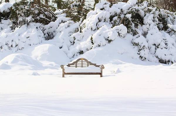 Unusual Perspective Wall Art - Photograph - Snow Dwarfed Bench by Karen Silvestri