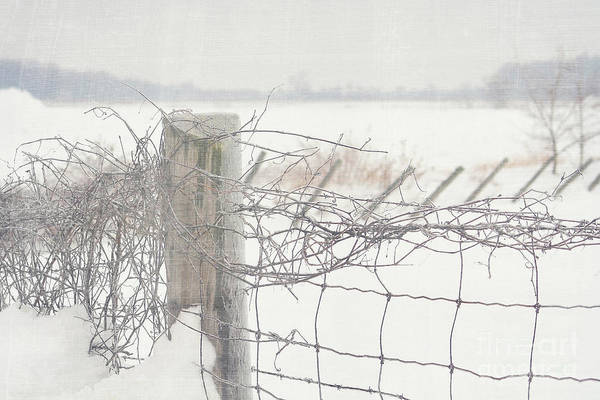 Barrier Photograph - Snow Fence by Sandra Cunningham