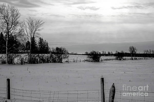 Wall Art - Photograph - Snow Field by Elaine Hunter