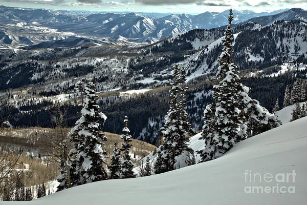Photograph - Snow Ghosts And Mountain Ranges by Adam Jewell
