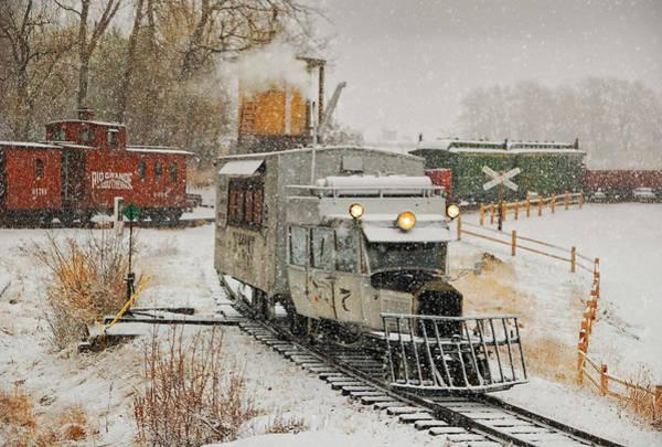 Wall Art - Photograph - Snow Goose by Ken Smith