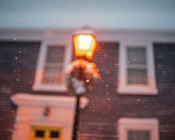 Photograph - Snow In Focus Marblehead Ma Street Light Snowstorm by Toby McGuire