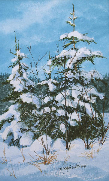 Painting - Snow Laden Trees by E Colin Williams ARCA