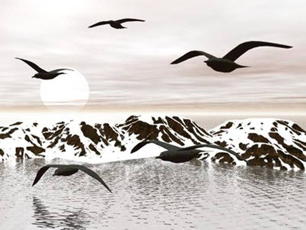 Digital Art - Snow Lake And Birds by Darren Cannell