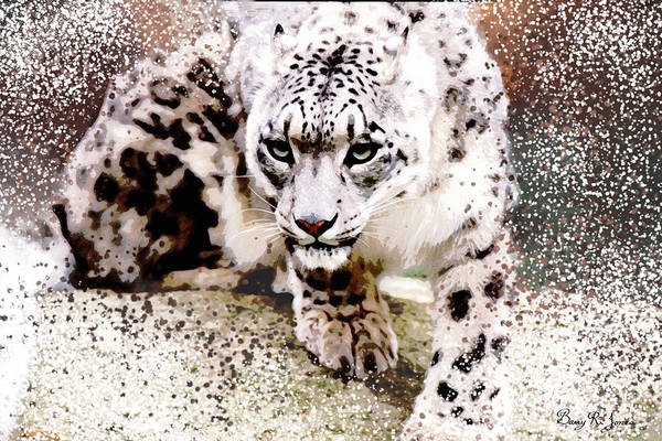 Digital Art - Snow Leopard by Barry Jones