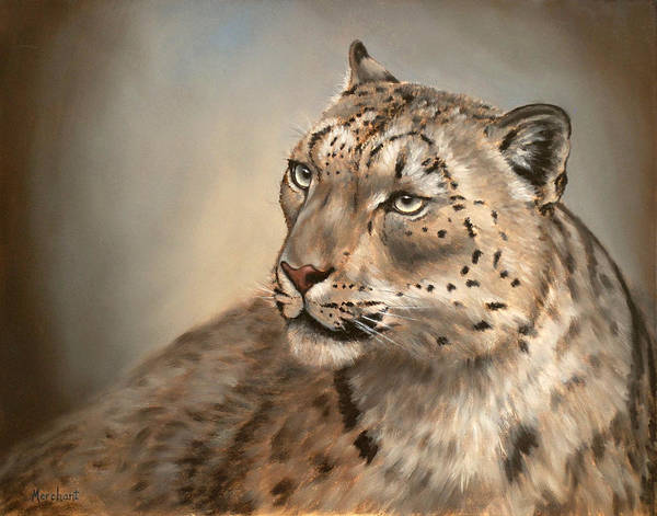 Painting - Snow Leopard by Linda Merchant
