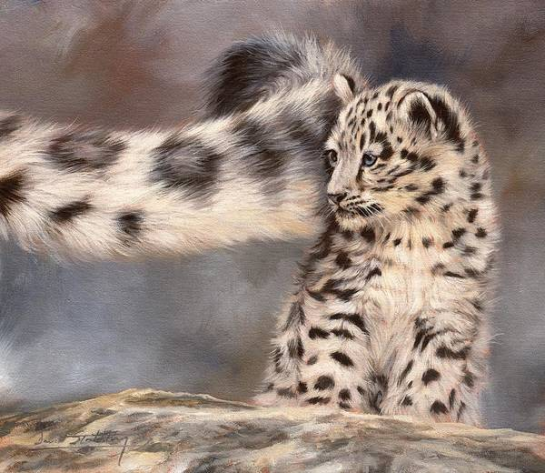Snow Leopard Wall Art - Painting - Snow Leopard Tail by David Stribbling