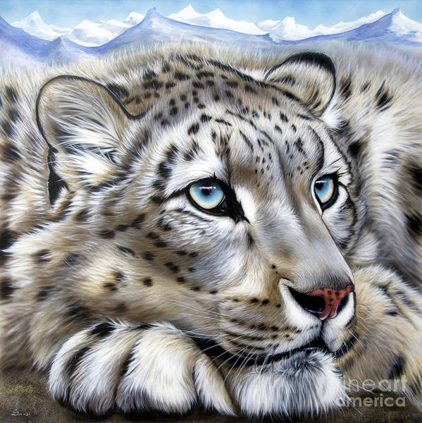 Big Cat Wall Art - Painting - Snow-leopard's Dream by Sandi Baker