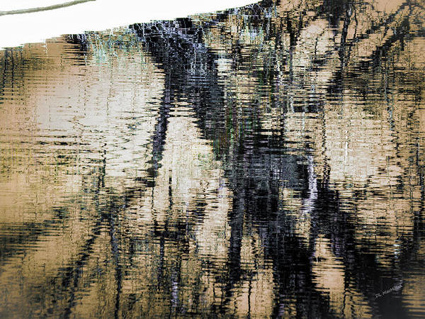 Photograph - Snow Line Reflections by Donna Lee