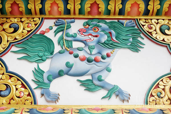 Tibetan Wall Art - Photograph - Snow Lion by Tim Gainey