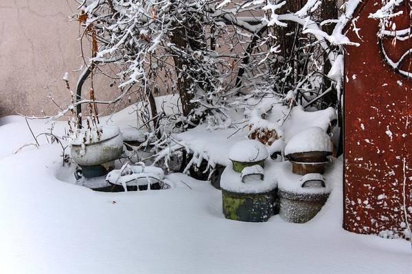 Photograph - Snow Morning by David Matthews